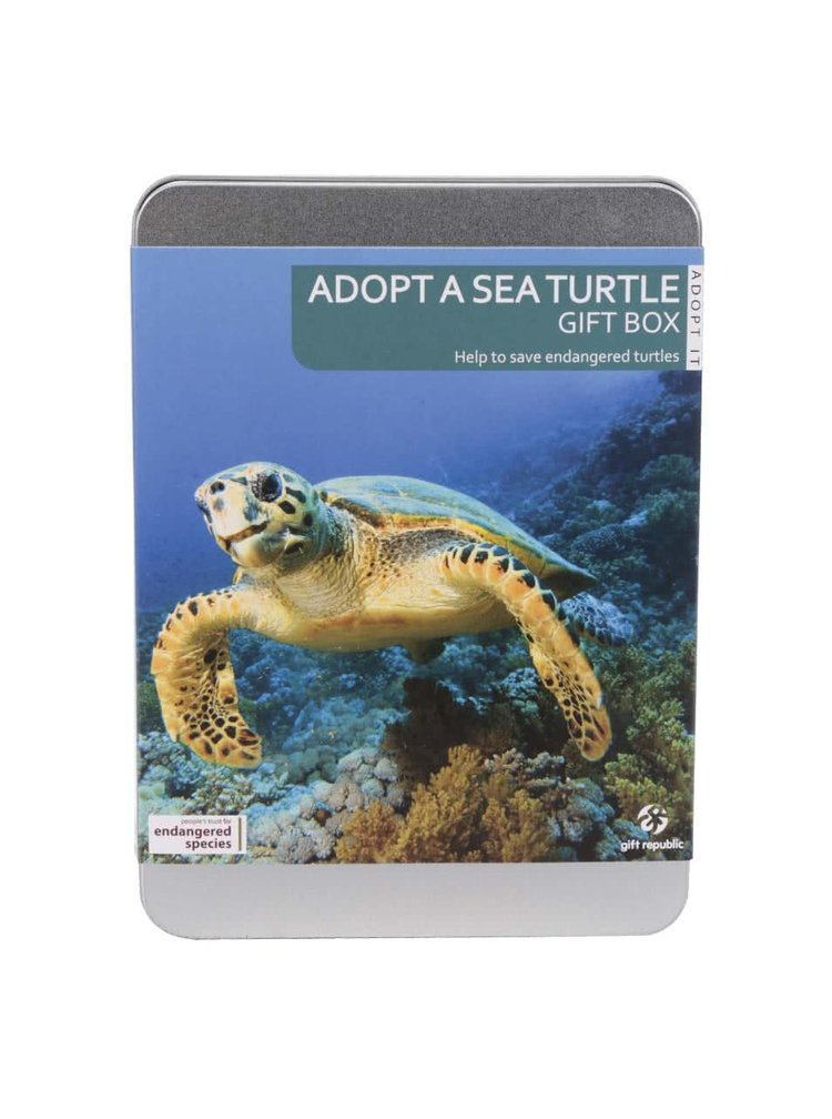 Adoptujte si mořskou želvu Gift Republic