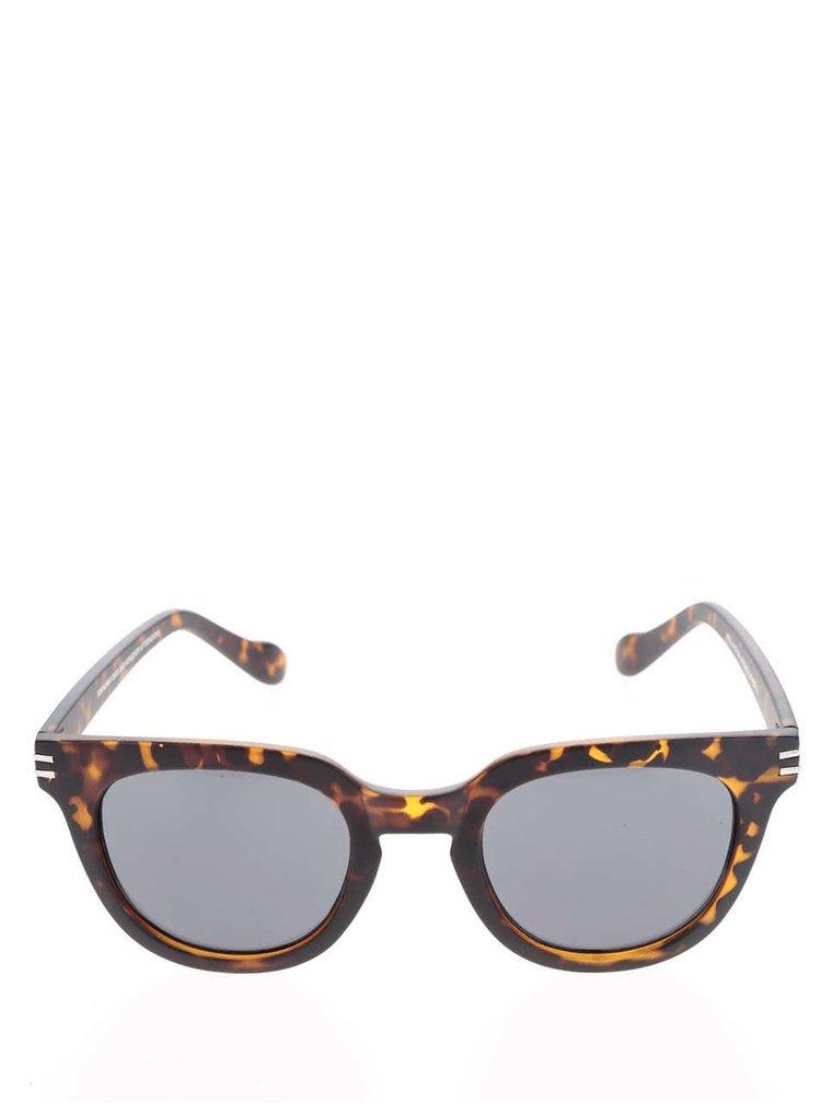 Tmavě hnědé vzorované unisex sluneční brýle CHPO Wellington