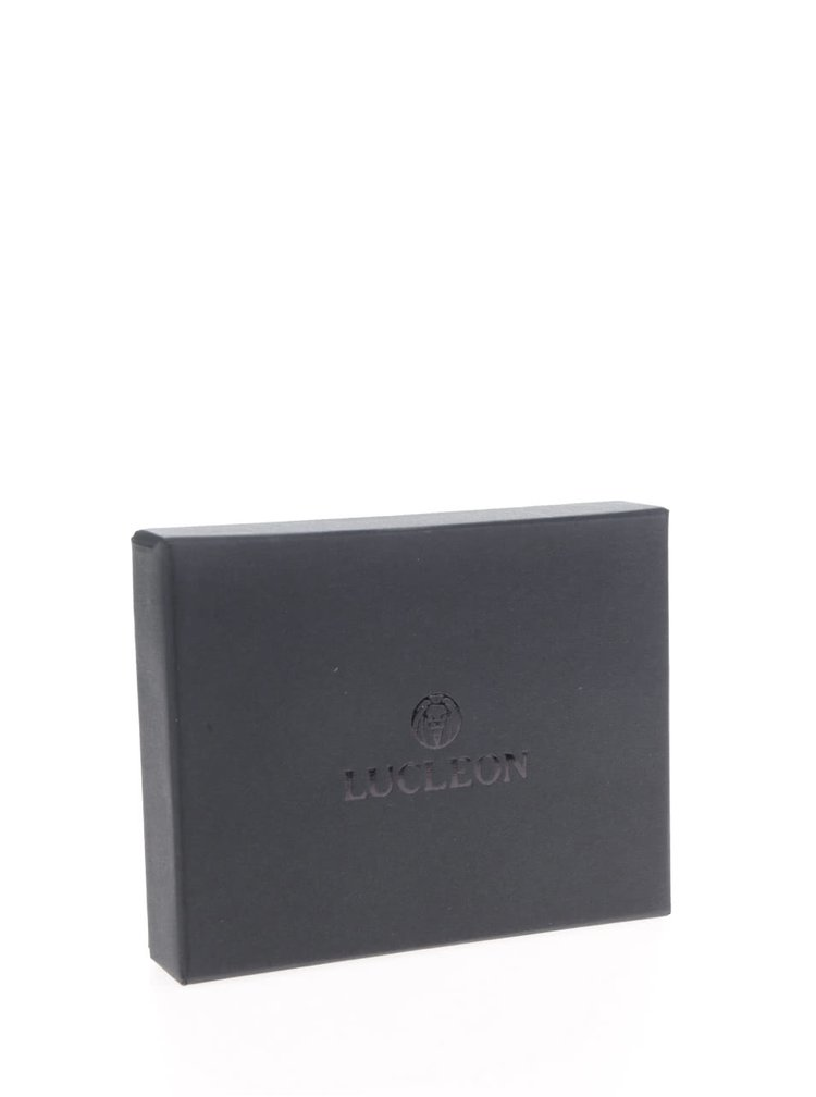 Černé pánské kožené pouzdro na karty Lucleon California