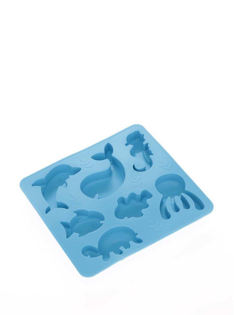 Modrá silikonová forma na led Kikkerland