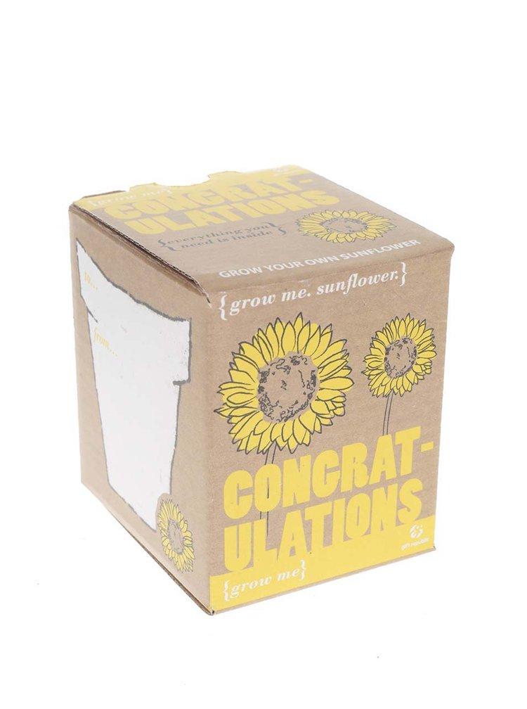 Set pro vypěstování květiny Gift Republic Grow me Congratulations!