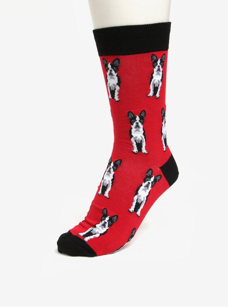 Červené pánské vzorované ponožky Sock It to Me Boston Terier