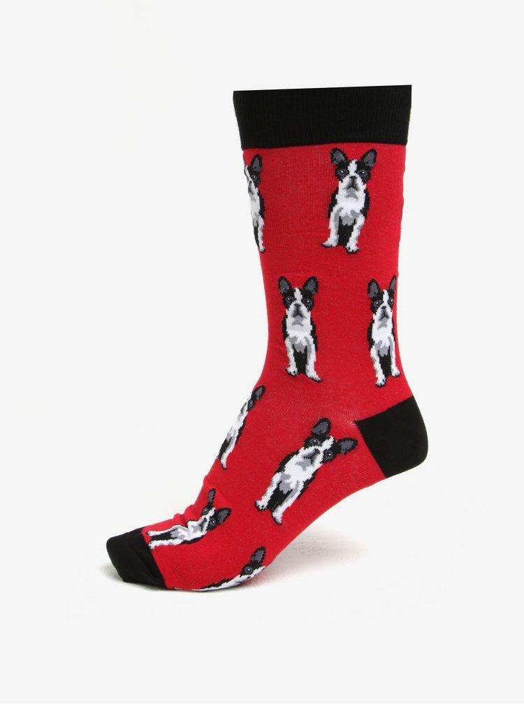 Červené pánske vzorované ponožky Sock It to Me Boston Terier