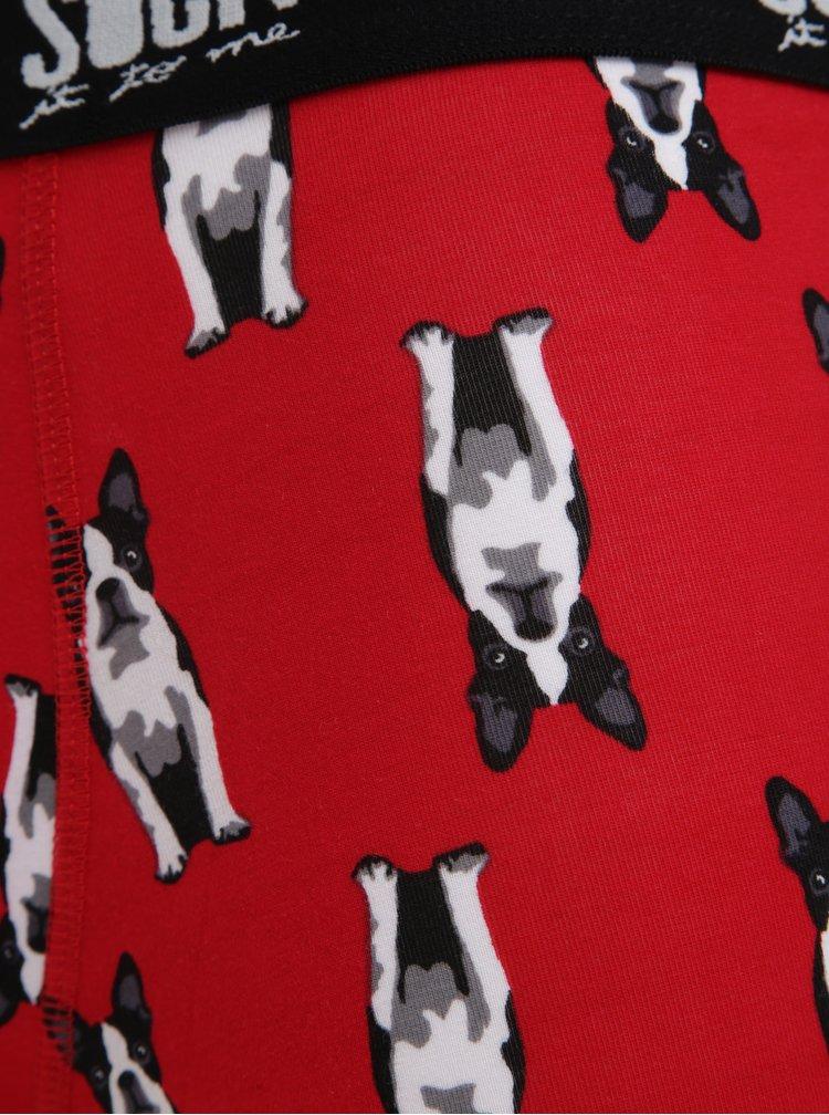 Červené vzorované boxerky Sock It to Me Boston Terier