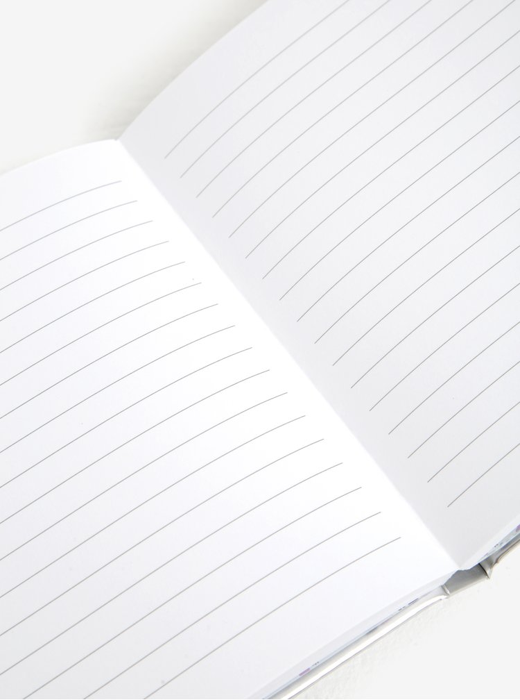 Zápisník ve stříbrné barvě s klíčem a zámkem CGB