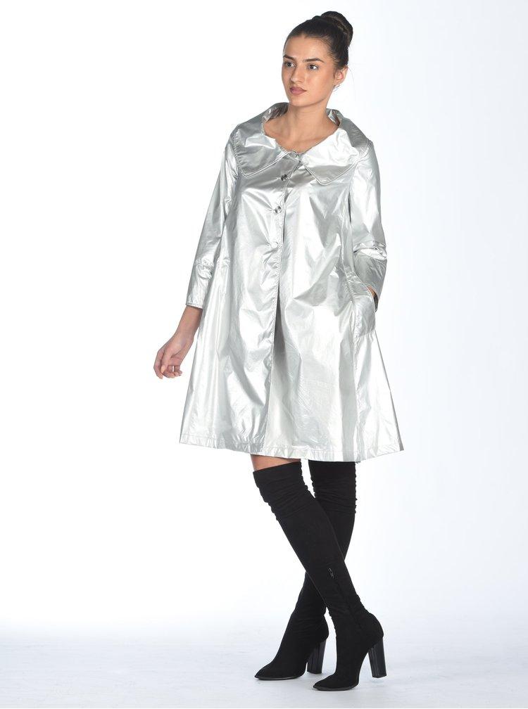Pardesiu usor argintiu - Alexandra Ghiorghie Terra