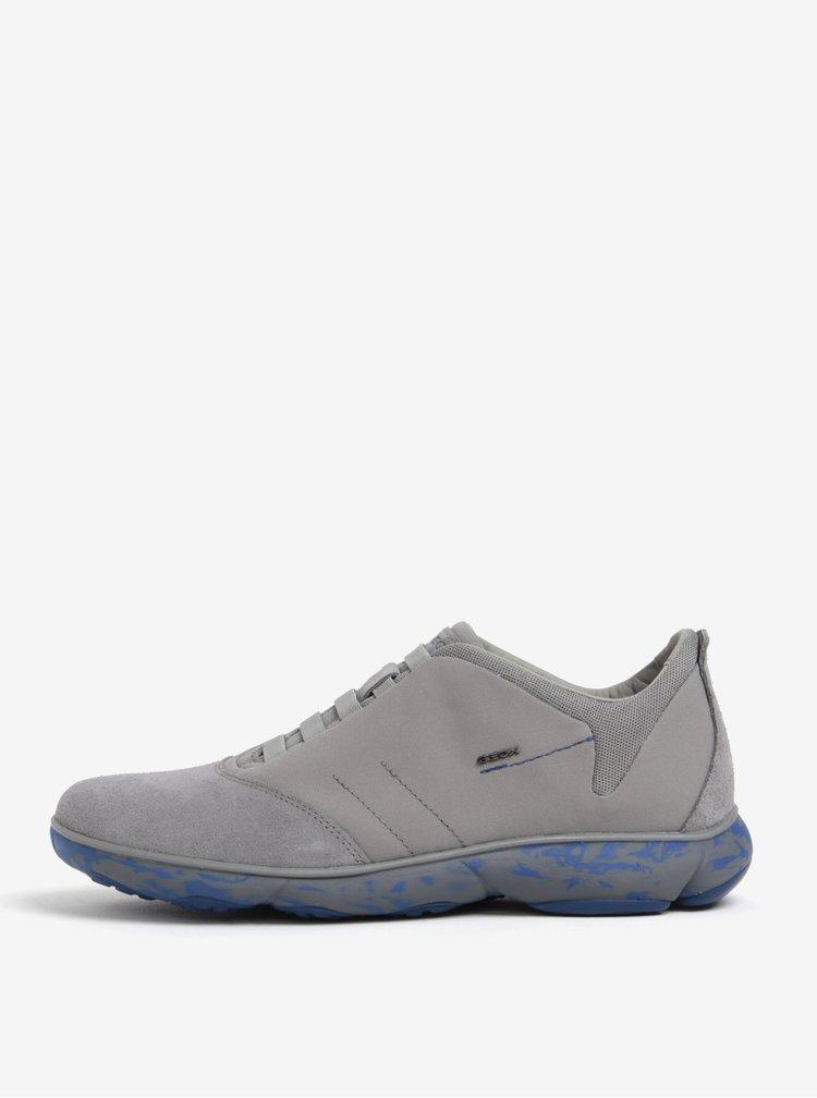 Pantofi sport gri din piele intoarsa pentru barbati Geox Nebula