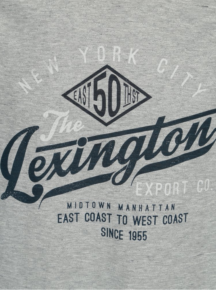 Tricou bleumarin cu gri cu print  Burton Menswear London