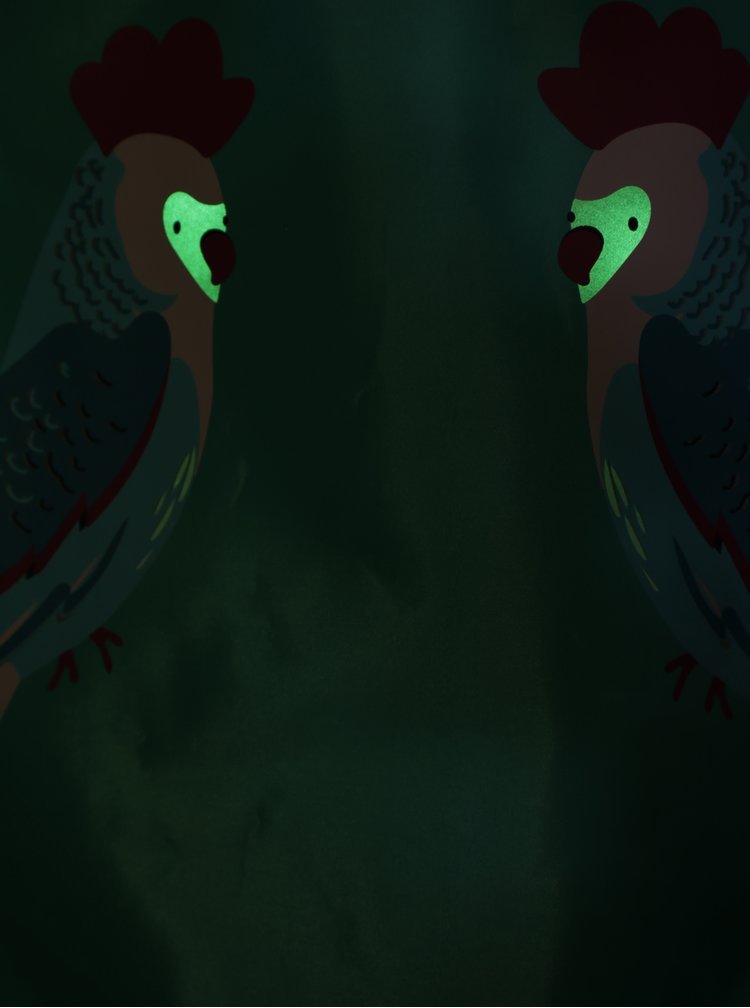 Tyrkysový holčičí vak s potiskem papoušků Tom Joule Active