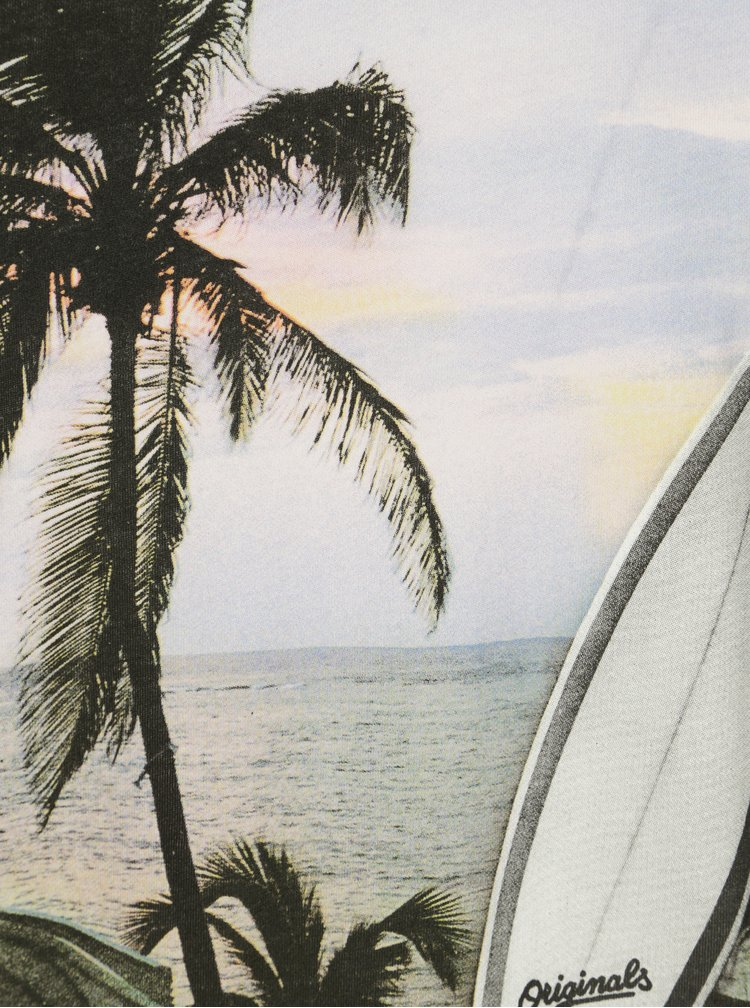 Krémové tričko s potiskem Jack & Jones Premium Horizon Surf