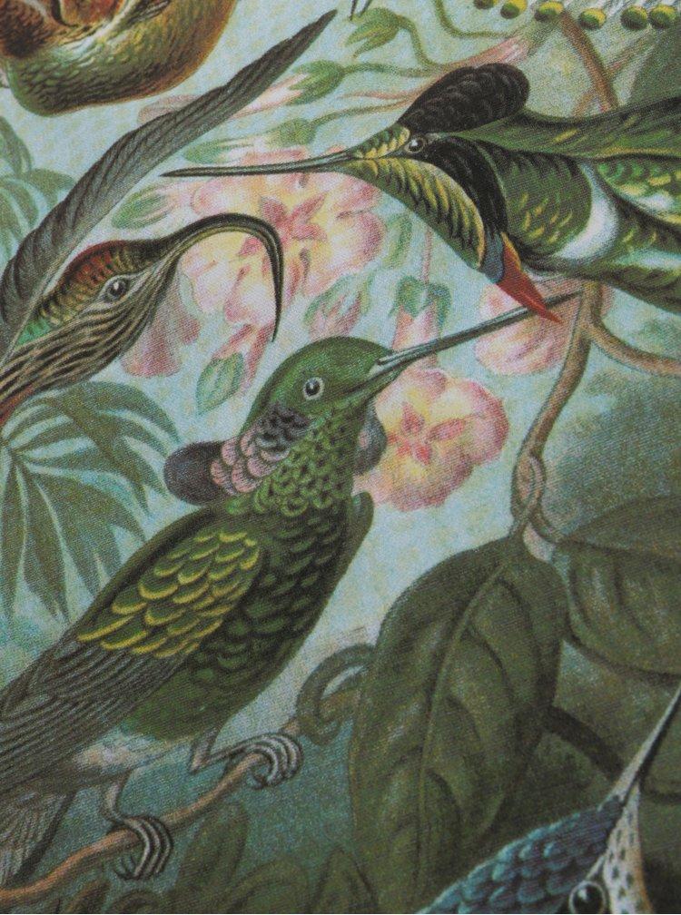 Zelená kuchyňská utěrka s motivem kolibříků Magpie Haeckel