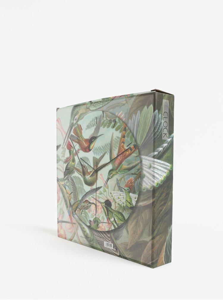 Zelené nástěnné hodiny s motivem kolibříků Magpie Hummingbirds
