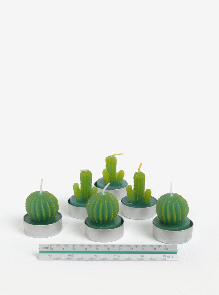Sada šesti zelených svíček ve tvaru kaktusu SIFCON
