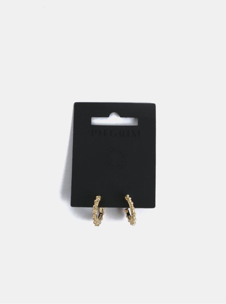 Pozlacené kulaté náušnice ve zlaté barvě Pilgrim