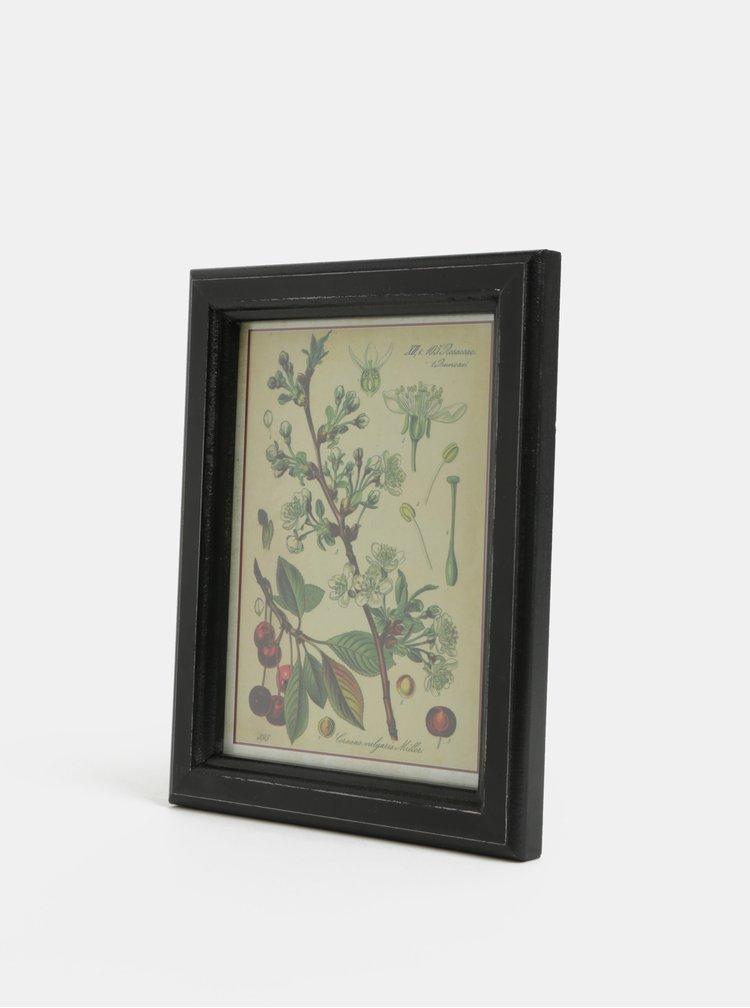 Hnědo-zelený obraz třešně Temerity Jones