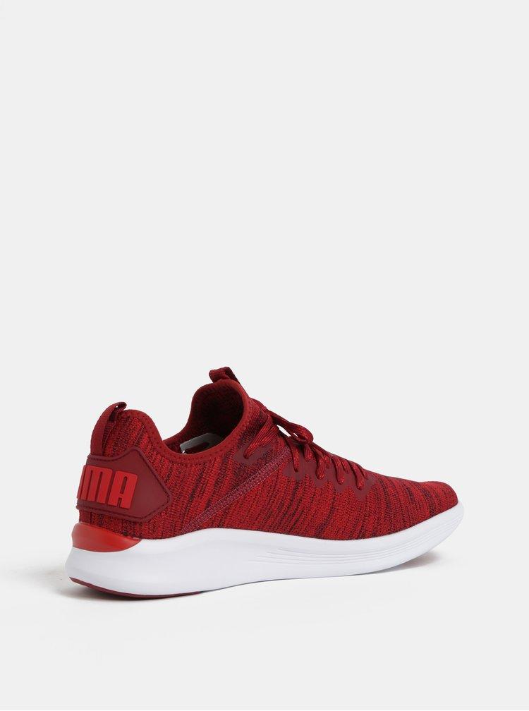 Červené melírované pánske tenisky Puma Ignite Flash evoKnit