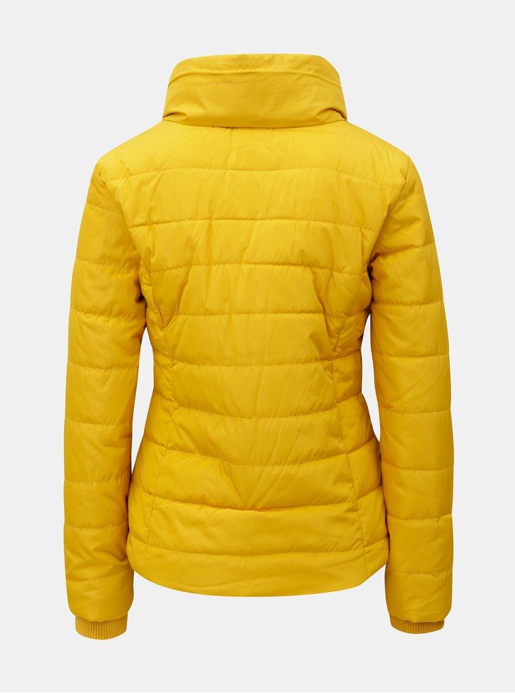 Žltá zimná prešívaná bunda s vysokým golierom Dorothy Perkins