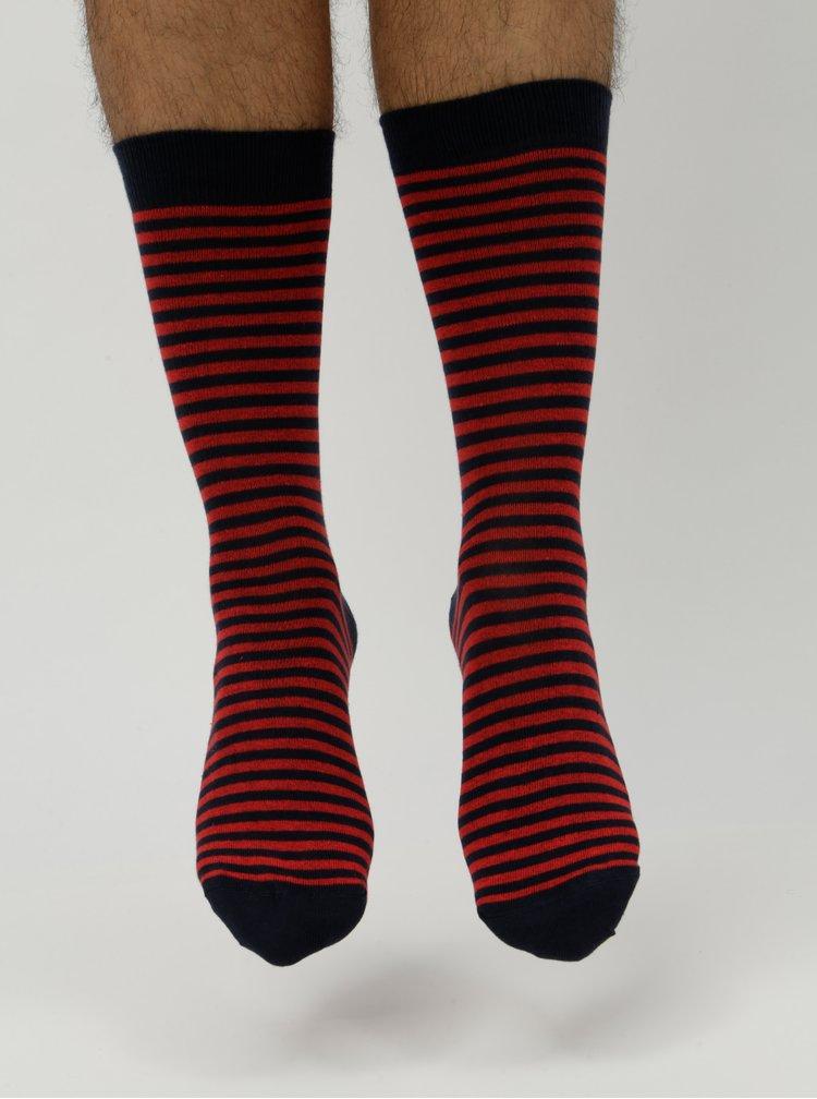 Červeno–modré pánske pruhované ponožky ZOOT