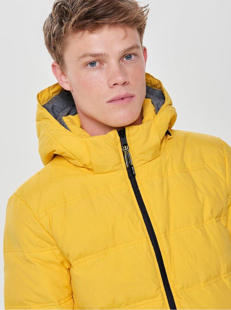 Žlutá zimní dlouhá prošívaná bunda ONLY & SONS Steen