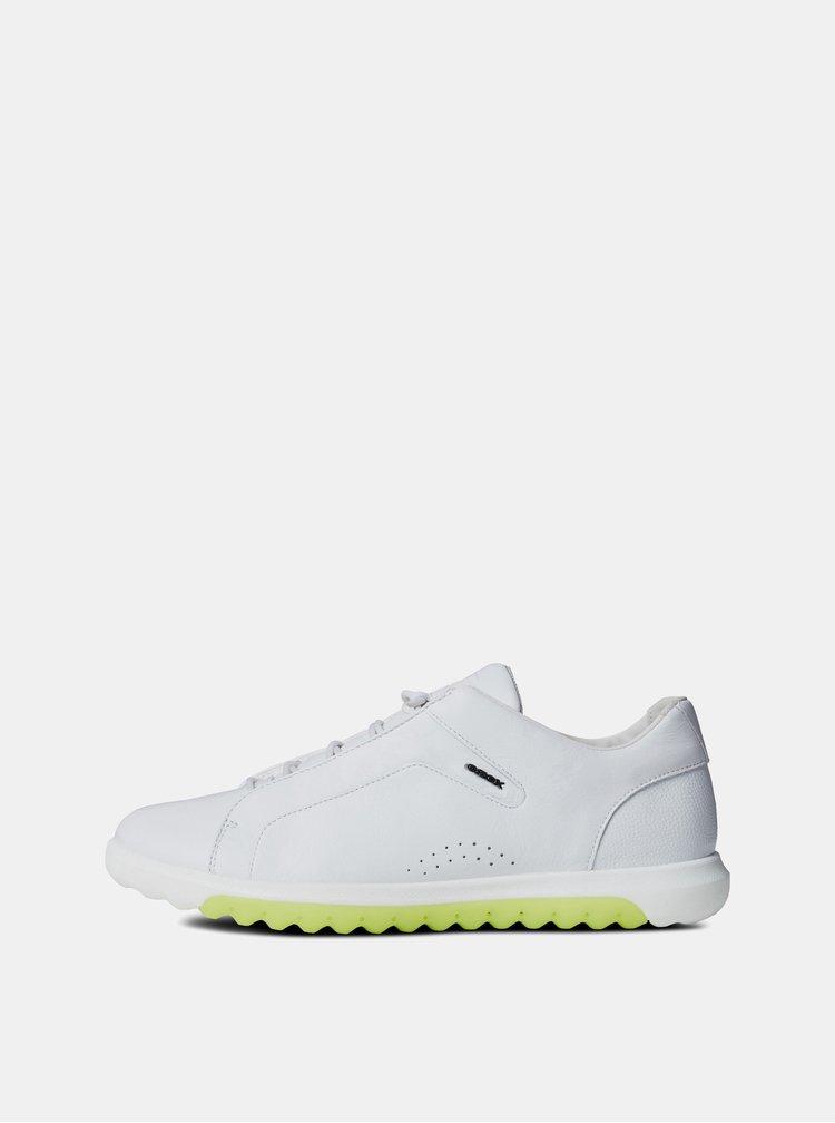 Pantofi sport barbatesti albi din piele Geox Nexside