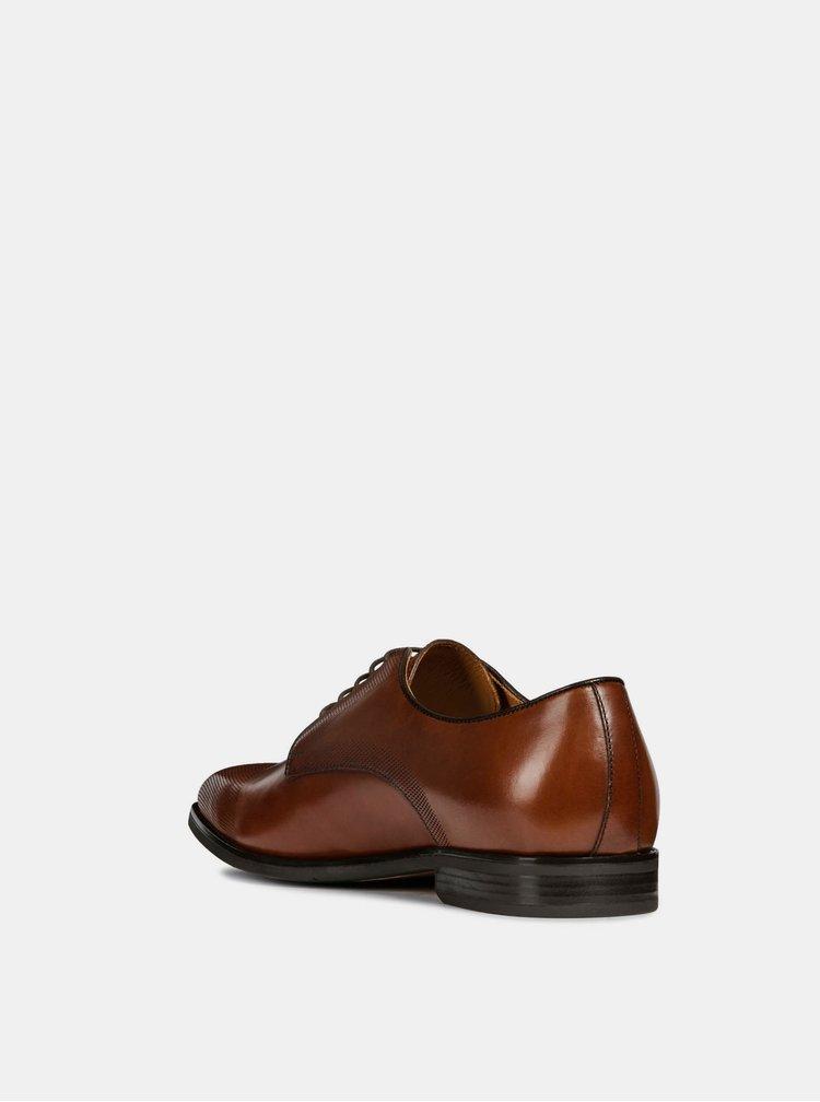 Pantofi barbatesti maro din piele Geox New Life