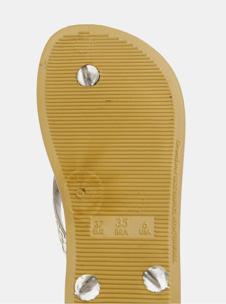 Žabky v zlatej farbe Ipanema Glam
