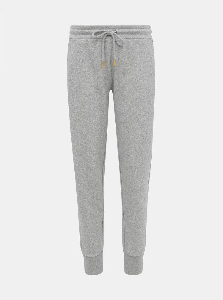 Pantaloni scurti, colanti, pantaloni basic pentru femei ZOOT Baseline - gri