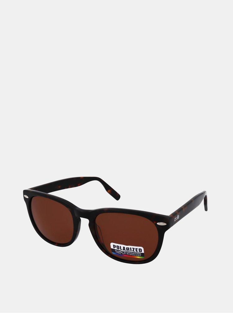Ochelari de soare pentru barbati Crullé - maro inchis