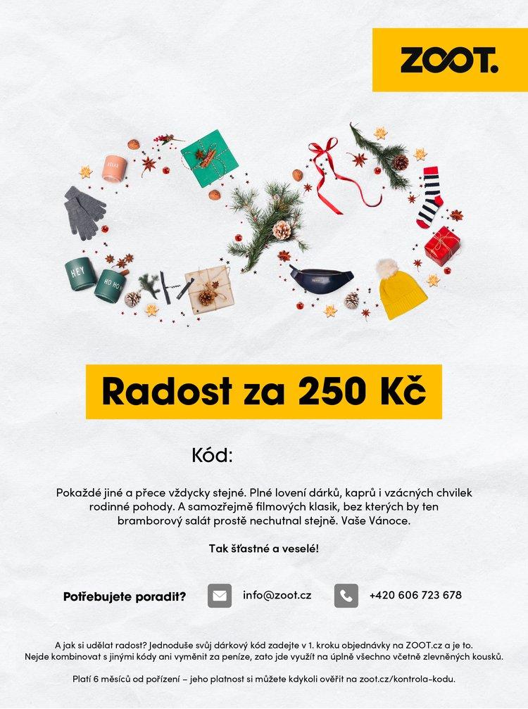 Vánoční elektronický poukaz na ZOOT v hodnotě 250 Kč
