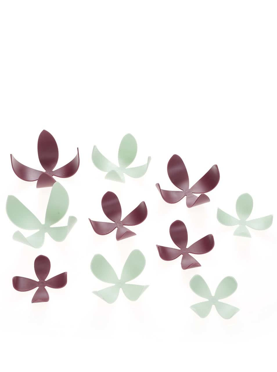 Sada deseti barevných květů na zeď Umbra Wallflower