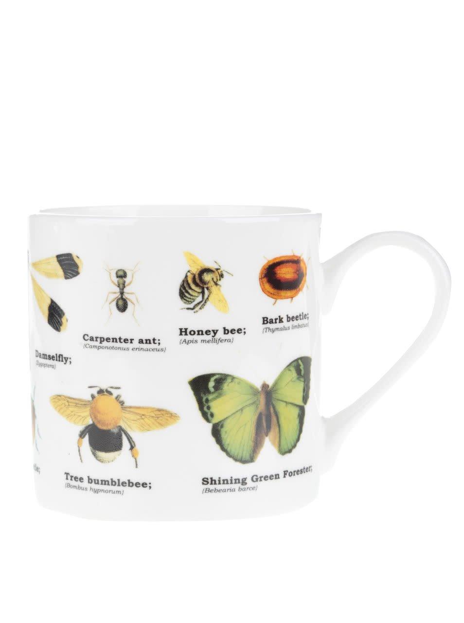 Bílý porcelánový hrnek s potiskem hmyzu Gift Republic