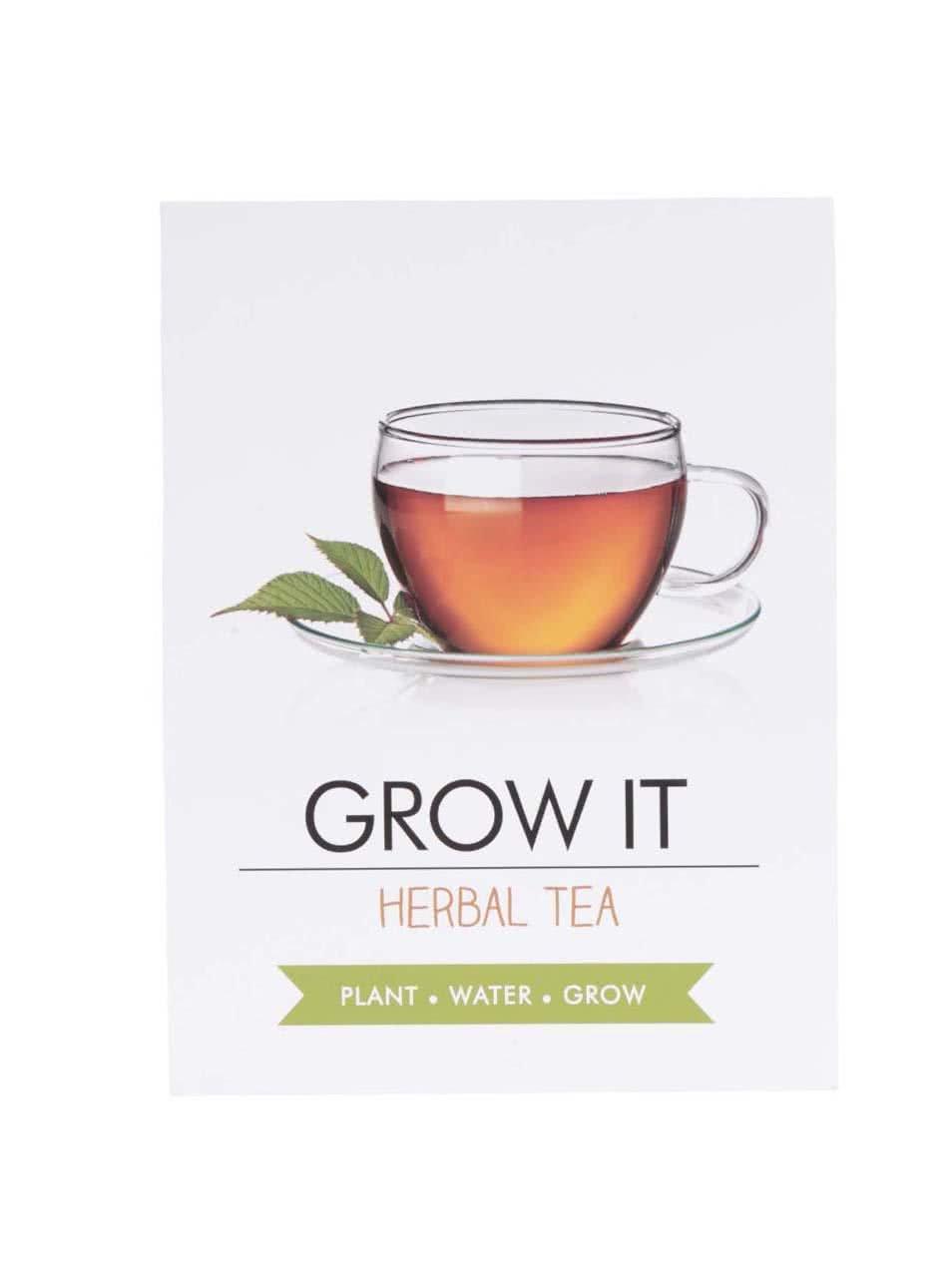 Set pro vypěstování čajových bylinek Gift Republic Grow it