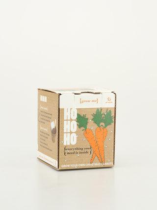 Sada pro vypěstování mrkve Gift Republic Christmas carrots
