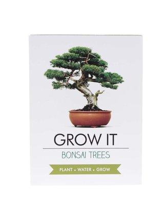 Sada pro vypěstování bonsaie Gift Republic Grow it