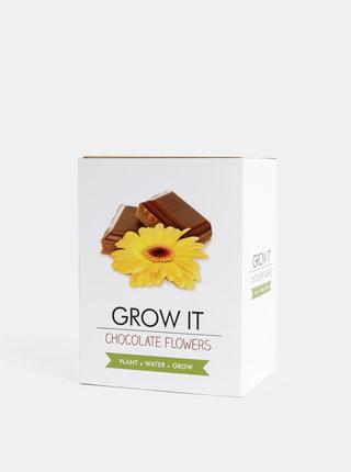 Sada pro vypěstování květiny Gift Republic Čokoláda