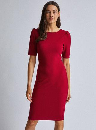 Vínové pouzdrové šaty Dorothy Perkins