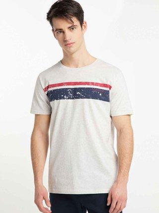 Svetlošedé pánske tričko s potlačou Ragwear Hake Organic